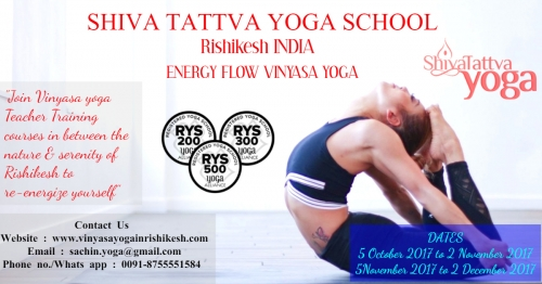 200 Hour Vinyasa Yoga Teacher Training Courses Why Should You Do It