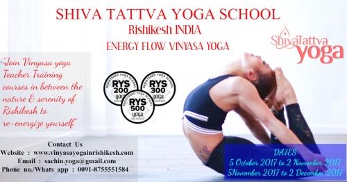 200 Hour Vinyasa Yoga Teacher Training Courses Why Should You Do It
