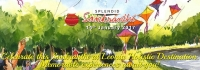 Kite Festival in Hyderabad - Sankranti |Book Stay and Entry Tickets