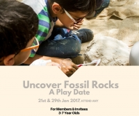 Uncover Fossil Rocks - A Play Date