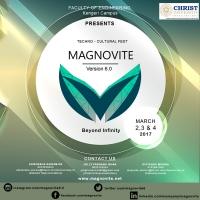 Magnovite v6.0