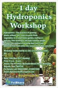1 Day hydroponics workshop