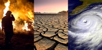 Climate change adaptation in a changing environment