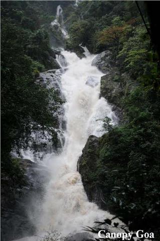 Trek to Tambdi Surla Waterfall, South Goa, Goa, India