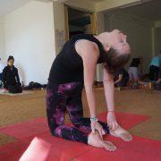 YTT in India at Chinmay Yoga, Dharamshala, Himachal Pradesh, India