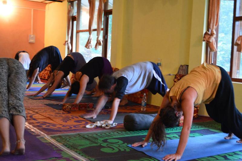 Yoga Teacher Training in VARKALA   Mahi Yoga, Varkala, Karnataka, India