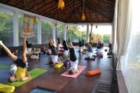 YTT in Dharamsala at Neo Yoga