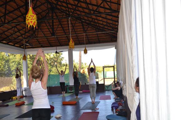 YTT in Dharamsala at Neo Yoga, Dharamshala, Himachal Pradesh, India