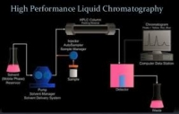 Instrumental Issues in the Validation of HPLC/UPLC Methodologies