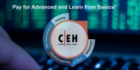 Ethical Hacking Training & Certification