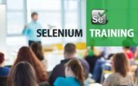 Selenium Course