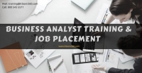 Free Job Oriented Business Analyst and PMP Demo Session