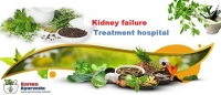 Best Chronic kidney disease treatment in Delhi