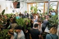 Indoor Plant Warehouse Sale - Forage in the Jungle