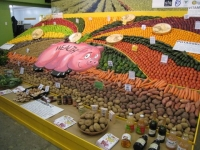 Horticultural Production and Marketing Course