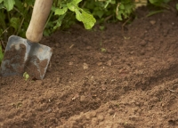 Integrated Soil Health and Fertility Management Course