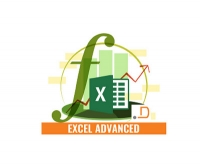 Master Business Reporting using Pivots tables and Charts in Excel