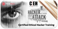Accelerate Your Career With Certified Ethical Hacker Training