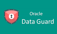 Oracle Data Guard Training for Real Time Experts - Free Demo