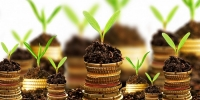 Agro Entrepreneurship & Market Facilitation Course