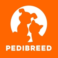 Pedibreed launch