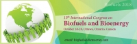 13th International Congress on Biofuels and Bioenergy