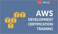 Learn To (Do) AWS Developer Course Like A Professional