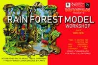 rain forest model workshop