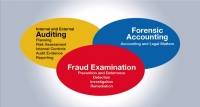 Guidelines for Performing Anti-Fraud Audits in A/P and Procurement