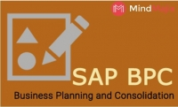 Learn The Ways To Improve Your SAP BPC Skills.
