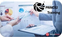 Prince2 Online Training Classes by Experts