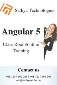 Angular 5 training in Hyderabad