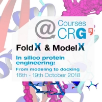 Courses@CRG: FoldX - In silico protein engineering: From modelling to docking