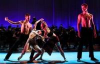Sonia Plumb- The Dance of da Vinci