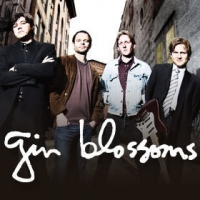 Gin Blossoms Concert