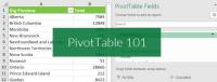 Excel Pivot Tables 101