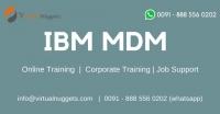 IBM MDM Training