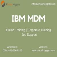 IBM InfoSphere MDM Training