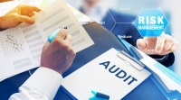 A Core Risk Management Skill for Auditors and Facilitators: Effective Analysis