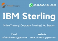IBM Sterling B2B Integrator Online Training