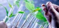 Crop Biotechnology Course