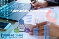 Overall Approach to the Audit of Asset/Liability Management (ALM) Function