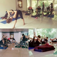 200 hours Yoga Teacher Training Course in Dharamsala