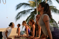 500 hours  Yoga Teacher Training Course in India