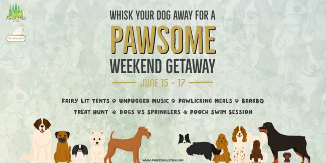 PAWsome Weekend Getaway, Mumbai, Maharashtra, India