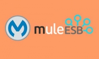 Mule ESB Training With Live Projects And Certification Course