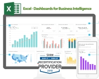 Excel - Dashboards for Business Intelligence