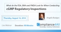 When Conducting cGMP Regulatory Inspections 2018