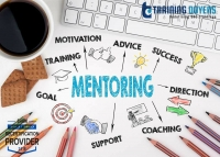 Establishing the Mentor-Mentee Relationship for your Organization