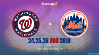 New York Mets vs. Washington Nationals at Flushing